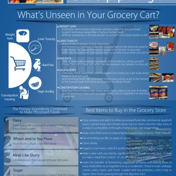 Grocery-Shopping-Infographic-Front-Colonic-Expert-web