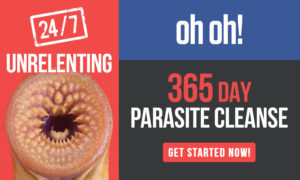 Parasite Cleanse Test - Colonic Expert